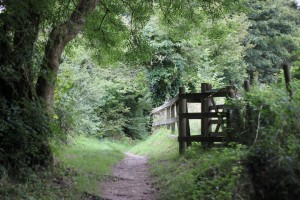 Prideaux Acupuncture is set in tranquil surroundings in the Luxulyan Valley